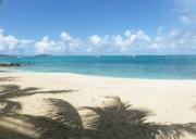 Studio a louer a St Martin, l'île aux 36 plages !!!!!