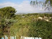 villas club jumelées à 500 mde la plage